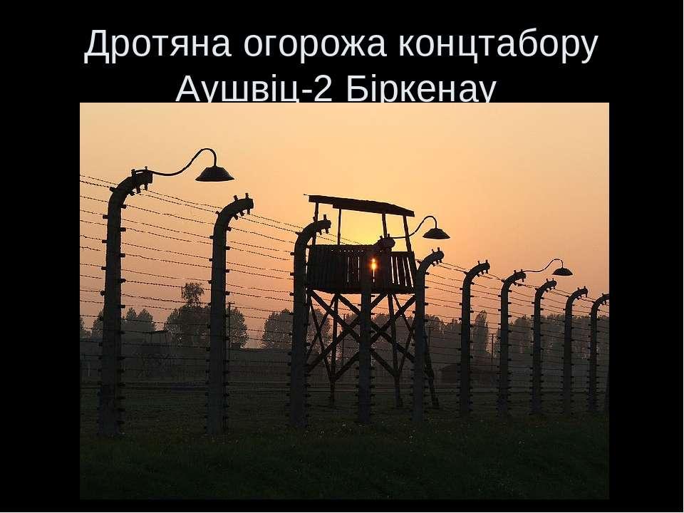 Дротяна огорожа концтабору Аушвіц-2 Біркенау