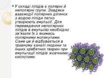 У складі ліпідів є полярні й неполярні групи. Завдяки взаємодії полярних діля...