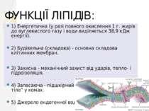 1) Енергетична (у разі повного окислення 1 г. жирів до вуглекислого газу і во...