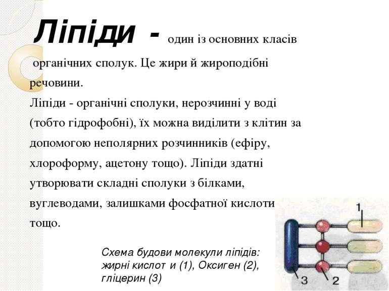 Ліпіди - один із основних класів органічних сполук. Це жири й жироподібні реч...