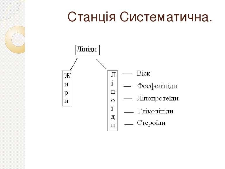 Станція Систематична.