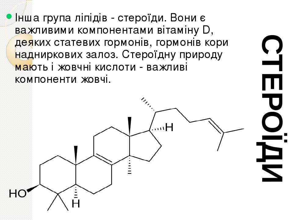 Інша група ліпідів - стероїди. Вони є важливими компонентами вітаміну D, деяк...
