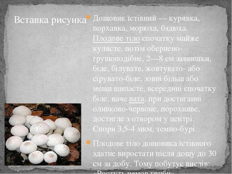 Дощовик їстівний— курявка, порхавка, морюха, бздюха. Плодове тілоспочатку м...