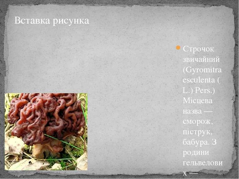Строчок звичайний(Gyromitra esculenta(L.) Pers.) Місцева назва— сморож, пі...
