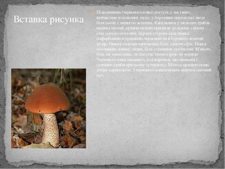 Підосичники (червоноголовці) ростуть у листяних, найчастіше в осикових лісах,...