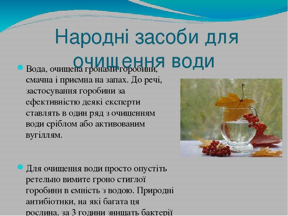 Народні засоби для очищення води Вода, очищена гронами горобини, смачна і при...