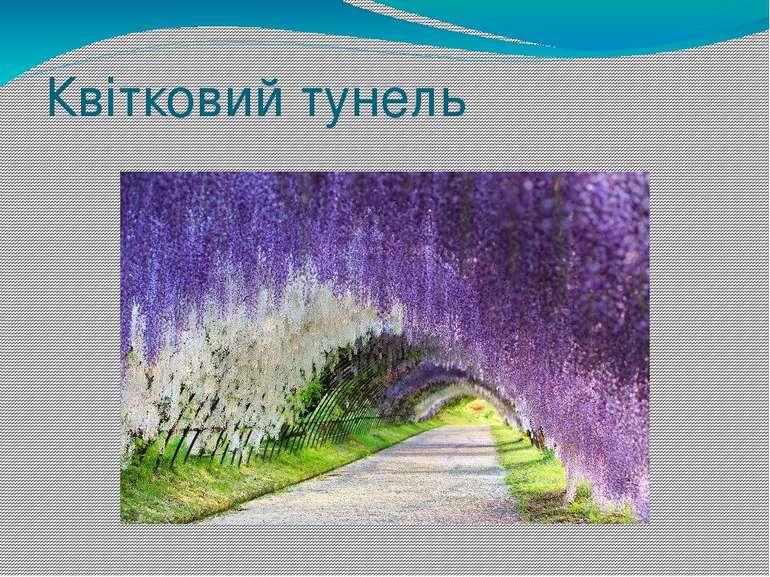 Квітковий тунель