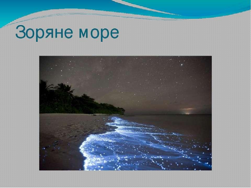 Зоряне море