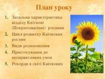 План уроку Загальна характеристика відділу Квіткові (Покритонасінні) рослини ...