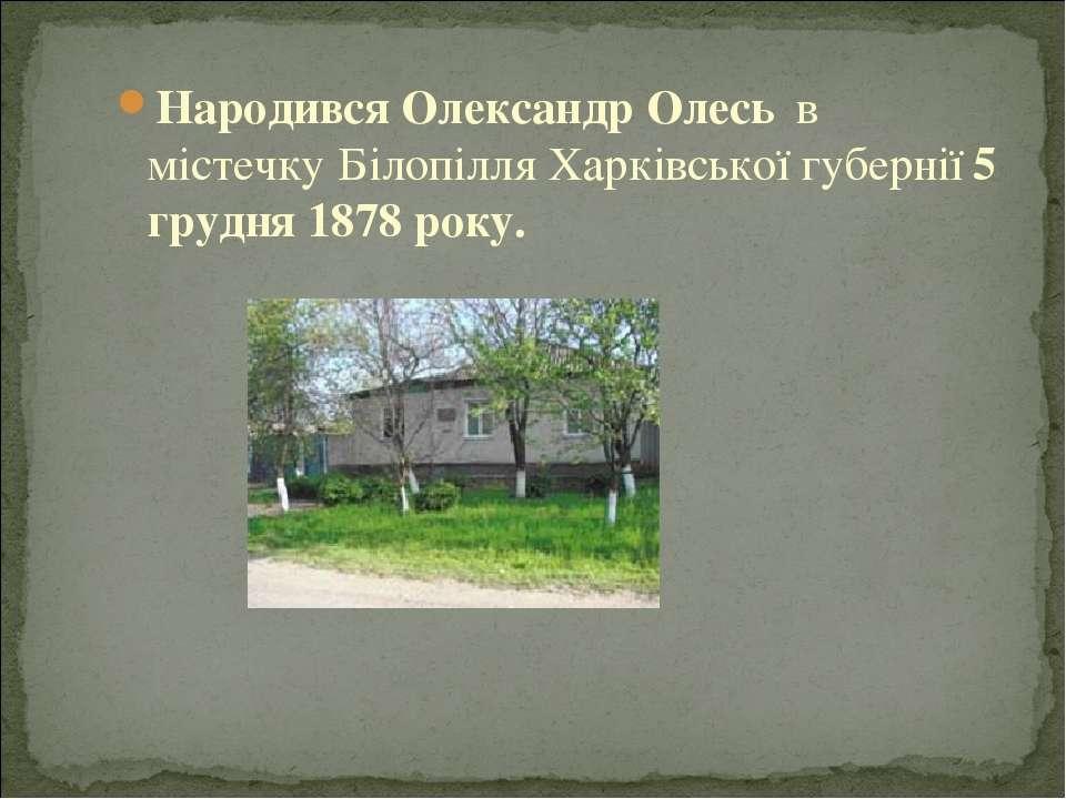 Народився Олександр Олесь в містечкуБілопілля Харківської губернії 5 грудня...