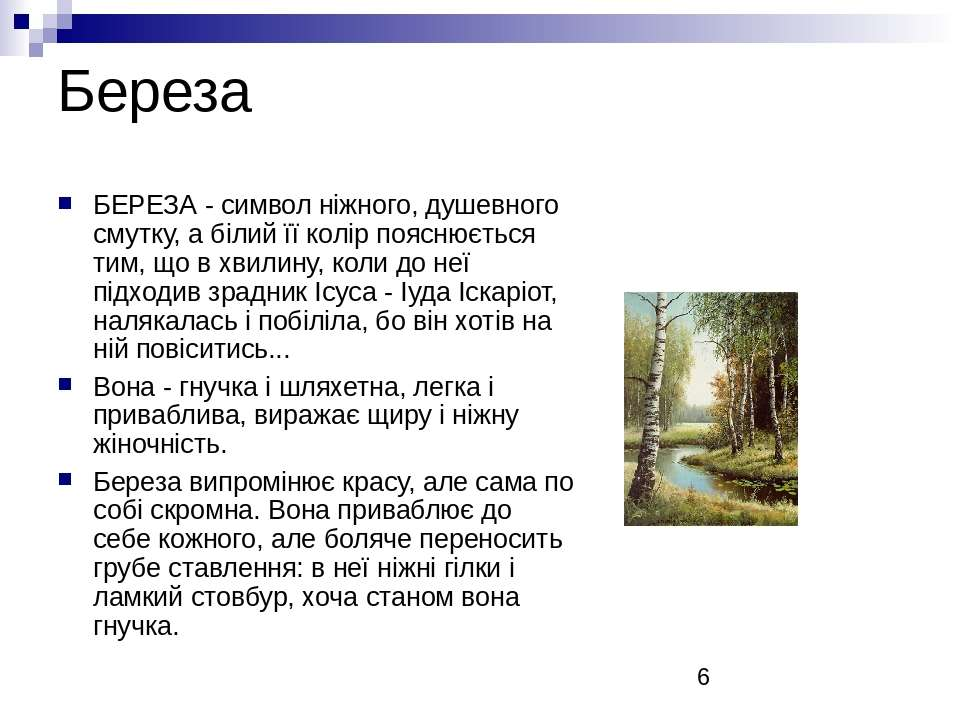 Береза БЕРЕЗА - символ ніжного, душевного смутку, а білий її колір пояснюєтьс...