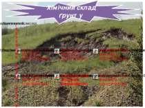 Хімічний склад ґрунту