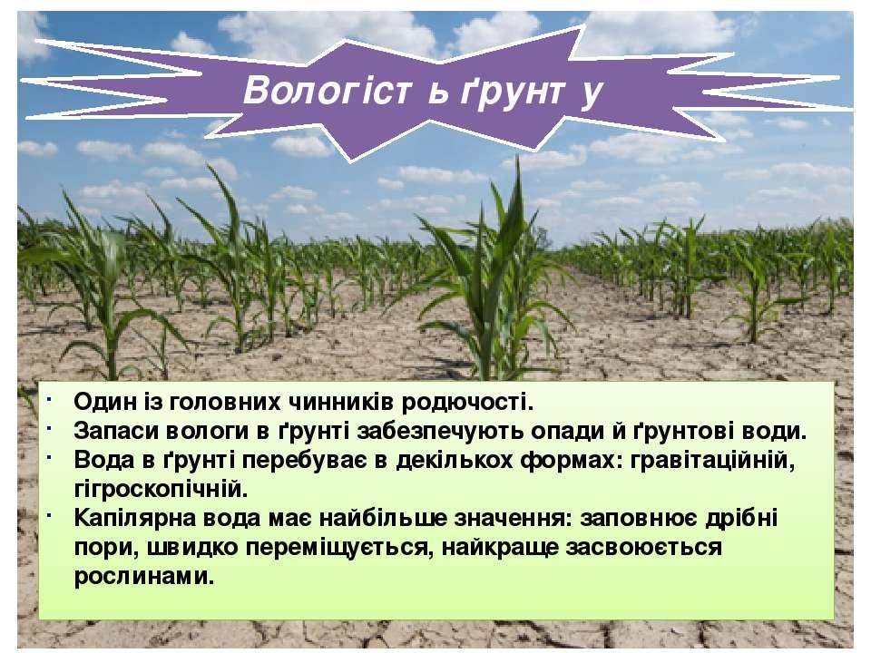 Вологість ґрунту Один із головних чинників родючості. Запаси вологи в ґрунті ...