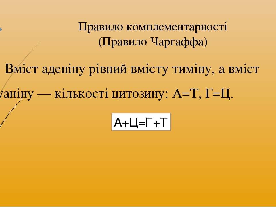 Правило комплементарності (Правило Чаргаффа) Вміст аденіну рівний вмісту тимі...