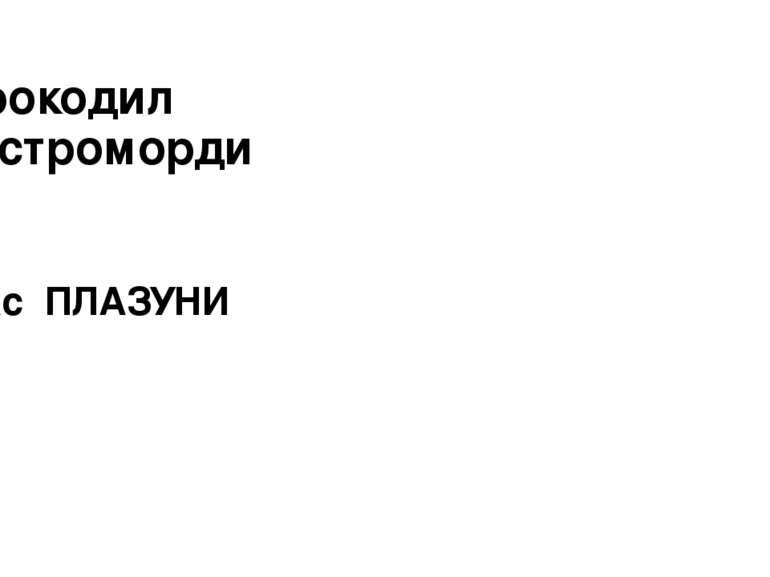 Крокодил гостромордий Клас ПЛАЗУНИ