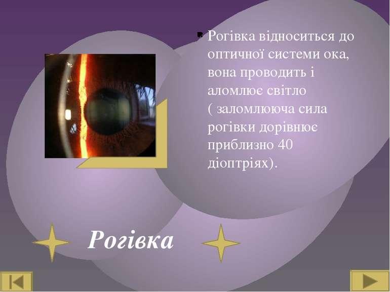 Рогівка Рогівка відноситься до оптичної системи ока, вона проводить і аломлює...