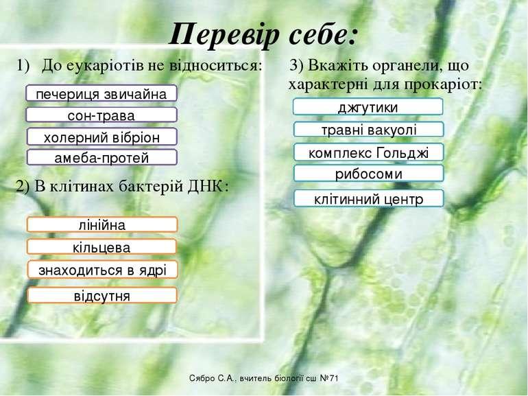 Перевір себе: До еукаріотів не відноситься: 3) Вкажіть органели, що характерн...