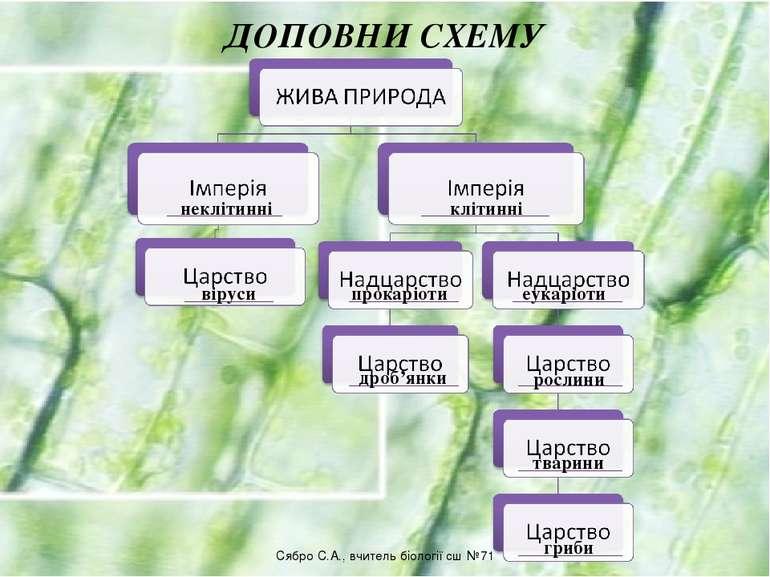 ДОПОВНИ СХЕМУ неклітинні клітинні віруси прокаріоти еукаріоти дроб'янки росли...