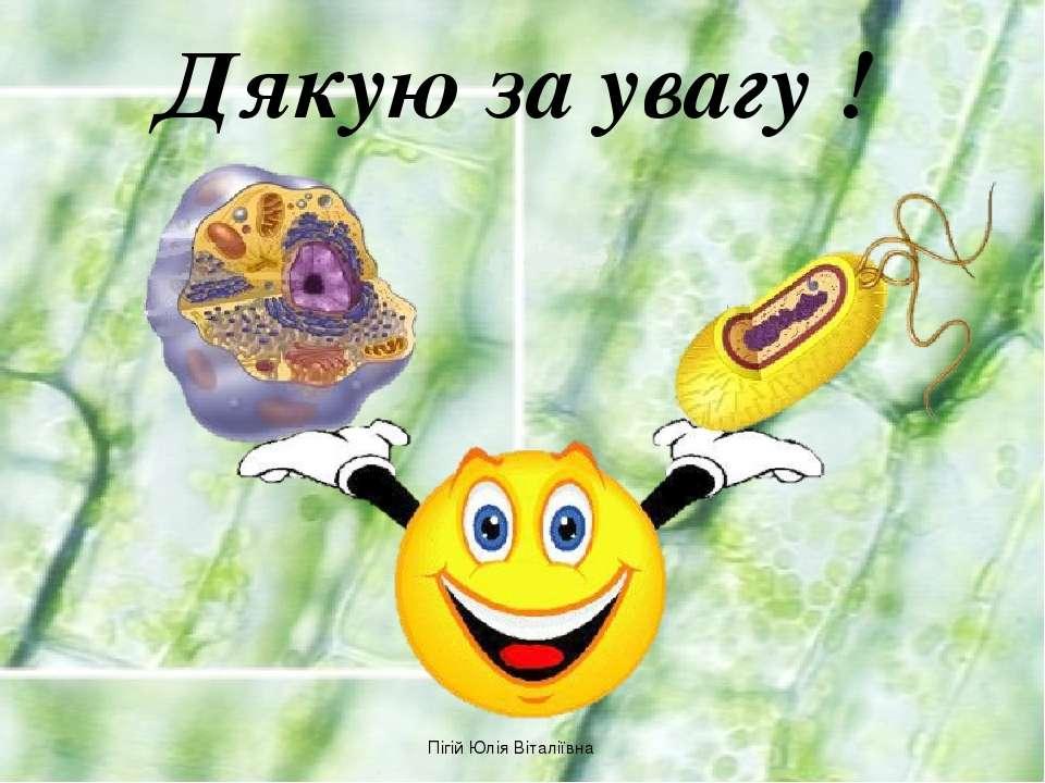 Дякую за увагу ! Пігій Юлія Віталіївна