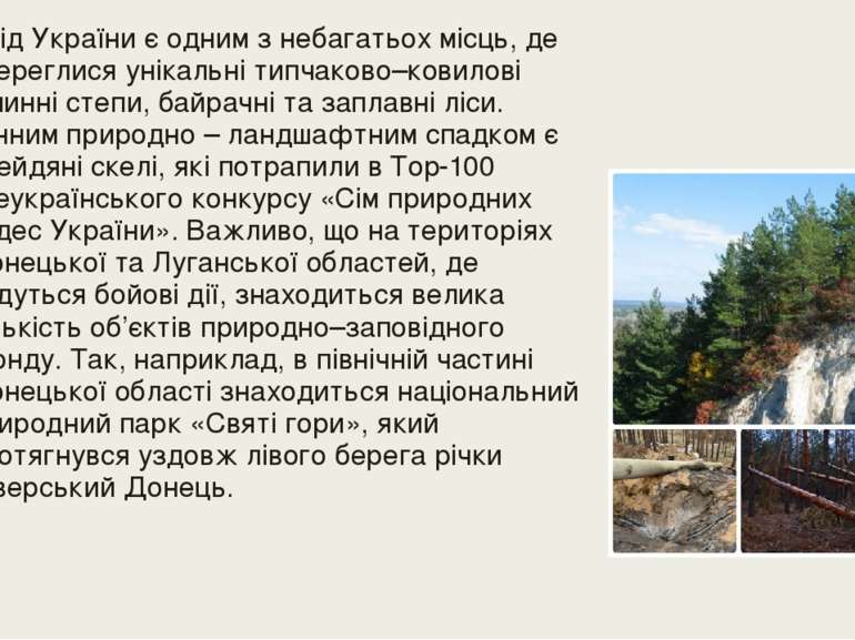 Схід України є одним з небагатьох місць, де збереглися унікальні типчаково–ко...