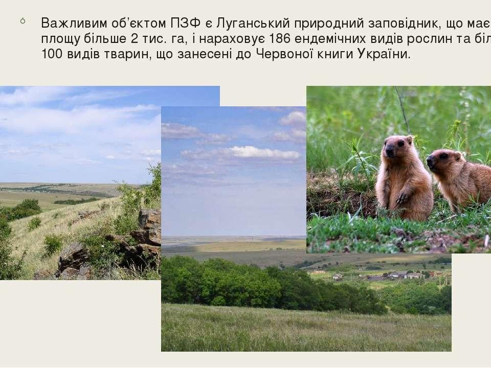 Важливим об'єктом ПЗФ є Луганський природний заповідник, що має площу більше ...