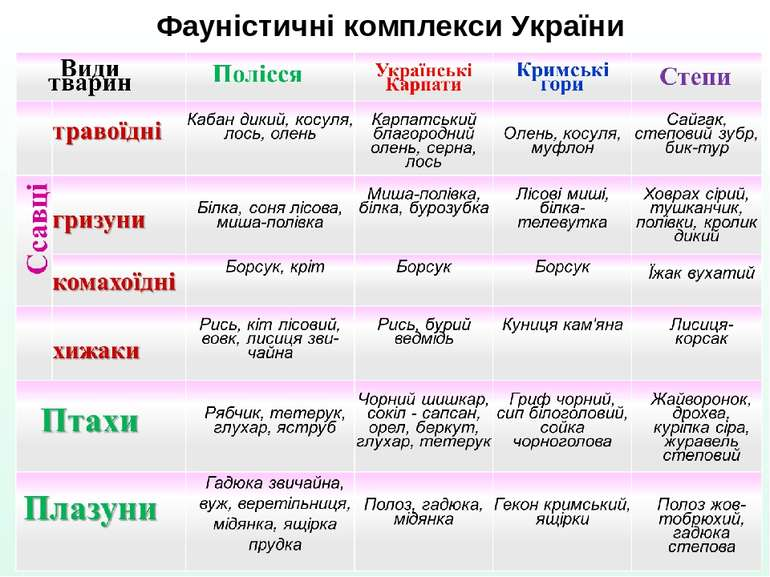 Фауністичні комплекси України