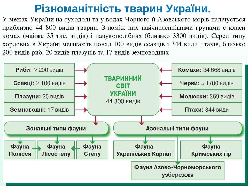 Різноманітність тварин України. У межах України на суходолі та у водах Чорног...