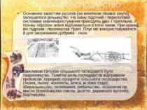 Основним заняттям русичів (за винятком лісової смуги) залишалося рільництво. ...