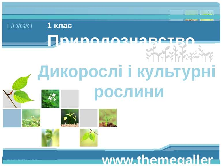 www.themegallery.com 1 клас Природознавство Дикорослі і культурні рослини L/O...