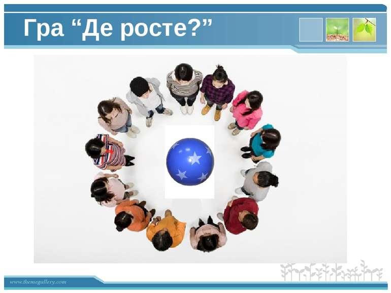 """Гра """"Де росте?"""" www.themegallery.com"""