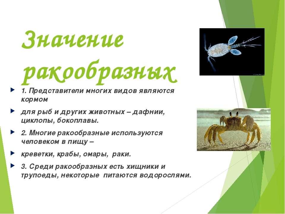 Значение ракообразных 1. Представители многих видов являются кормом для рыб и...