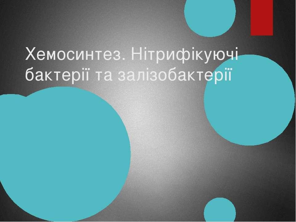 Хемосинтез. Нітрифікуючі бактерії та залізобактерії