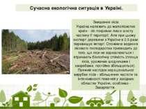 Сучасна екологічна ситуація в Україні. Знищення лісів Україна належить до мал...