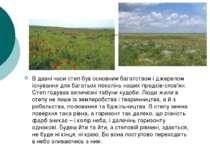 В давні часи степ був основним багатством і джерелом існування для багатьох п...