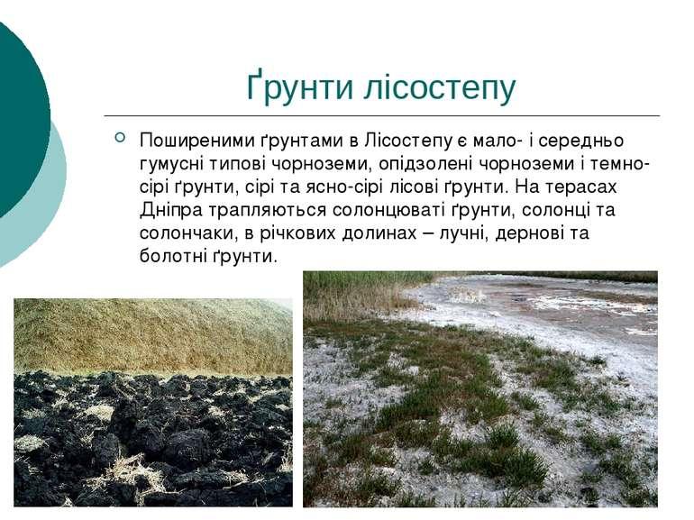 Ґрунти лісостепу Поширеними ґрунтами в Лісостепу є мало- і середньо гумусні т...