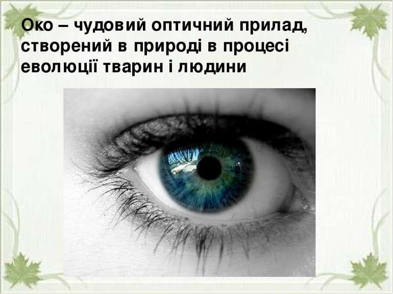 Око – чудовий оптичний прилад, створений в природі в процесі еволюції тварин ...