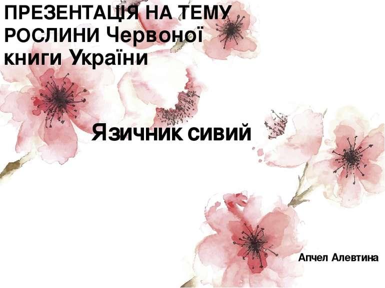 ПРЕЗЕНТАЦІЯ НА ТЕМУ РОСЛИНИ Червоної книги України Язичник сивий Апчел Алевтина