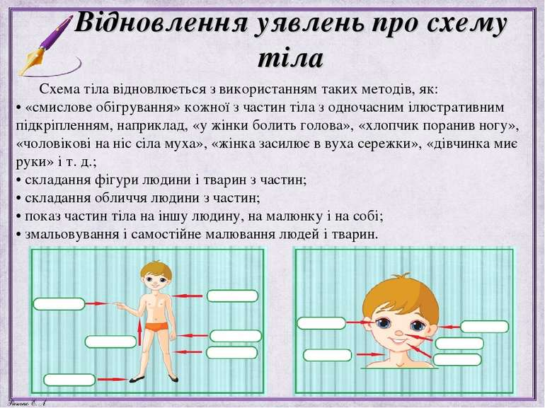 Відновлення уявлень про схему тіла Схема тіла відновлюється з використанням т...