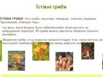 ЗНАЧЕННЯ ГРИБІВ У ПРИРОДІ Гриби вживають тварини лісу (комахи, білки, кабани ...