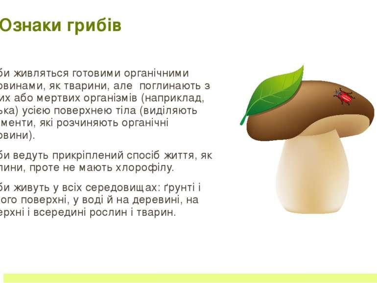 Різноманітність грибів Група Значення Шапинкові споживаютьлюди,комахи,білки,к...