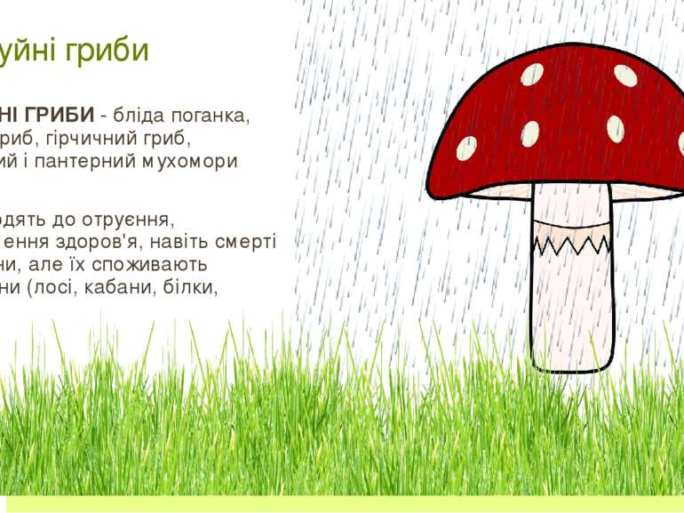 Чортів гриб Опеньки несправжні Бліда поганка Мухомор
