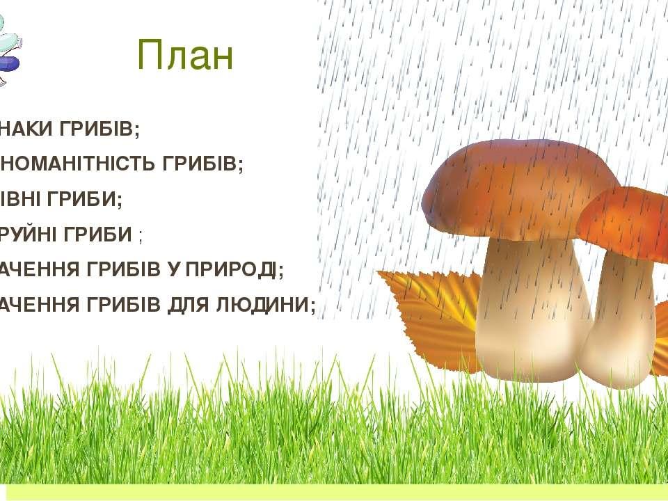 Ознаки грибів Гриби живляться готовими органічними речовинами, як тварини, ал...