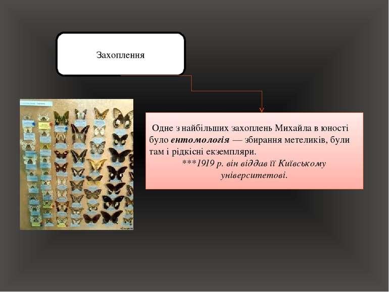 Захоплення Одне з найбільших захоплень Михайла в юності було ентомологія — зб...