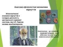 Фізіологічною основою відчуттів є складна діяльність центральної нервової сис...