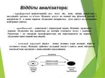 Відділи аналізатора: - периферичний (рецепторний): око, вухо, ніс, язик, шкір...