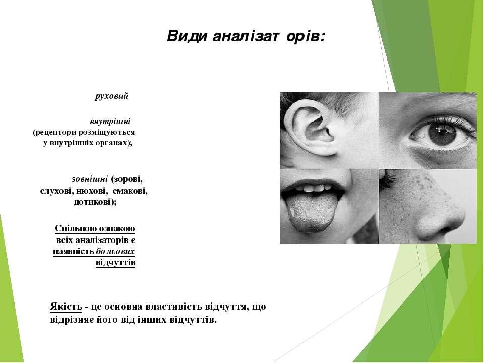 Види аналізаторів: зовнішні (зорові, слухові, нюхові, смакові, дотикові); вну...