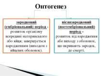 Онтогенез зародковий (ембріональний) період - розвиток організму всередині ма...