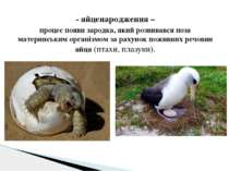 - яйценародження – процес появи зародка, який розвивався поза материнським ор...
