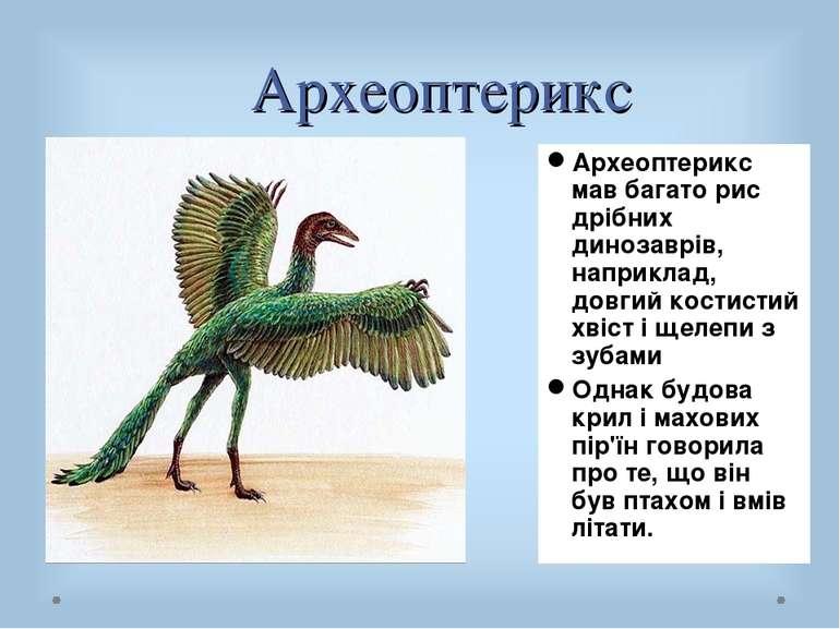 Археоптерикс Археоптерикс мав багато рис дрібних динозаврів, наприклад, довги...