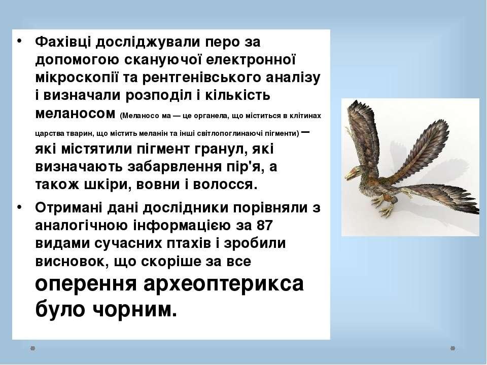 Фахівці досліджували перо за допомогою скануючої електронної мікроскопії та р...